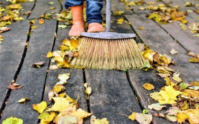 Cum te pregatesti pentru curatenia de toamna din casa si curtea ta